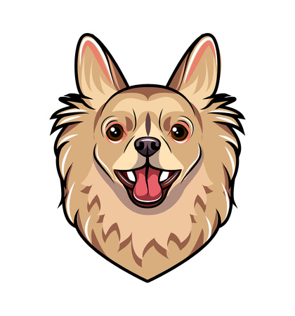 Chihuahua dog portrait. Dog breed. Vector illustration