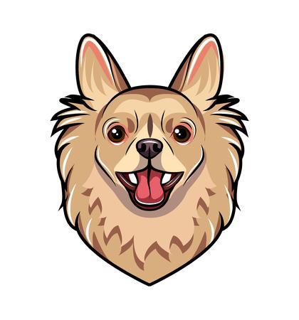 Chihuahua dog portrait. Dog breed. Vector illustration