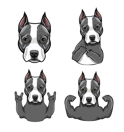 Staffordshire Terrier dog. Gestures set. Muscles, Middle finger, Head, Rock gesture, Horns. Dog portrait. Vector illustration.