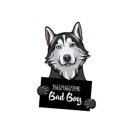 Perro husky siberiano chico malo. Prisión de perros. Fondo de ficha policial. Husky criminal. Ilustración de vector