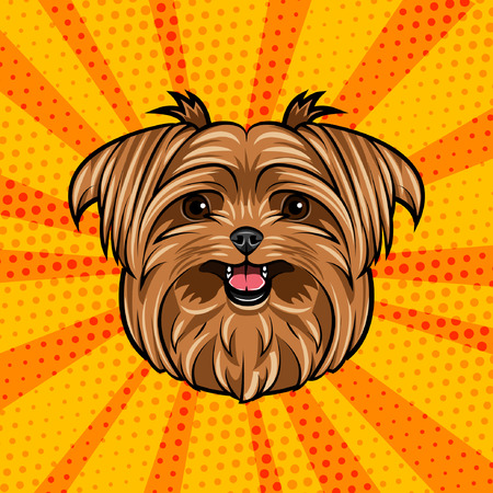 Yorkshire terrier dog head. Cute domestic dog portrait. Dogs face, muzzle. Colorful background. Vector illustration.
