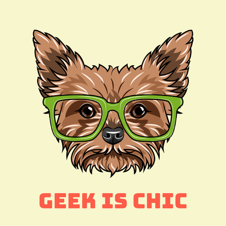 Yorkshire terrier Geek