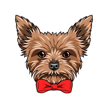 Yorkshire Terrier dog. Red bow. Dogs accessory. Yorkshire terrier dog breed. Vector illustration. Ilustracja