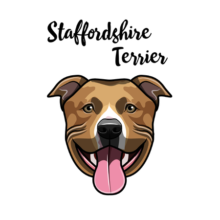 American Staffordshire Terrier portrait. Cute dog. Staffordshire Terrier head. Vector illustration. Çizim