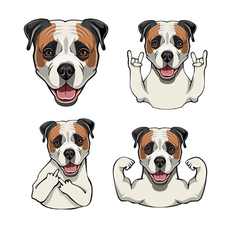 American Bulldog. Rock gesture, Muscles, Horns, Middle finger, Head, Face, Muzzle. Gestures set. Dog portrait. Vector illustration.