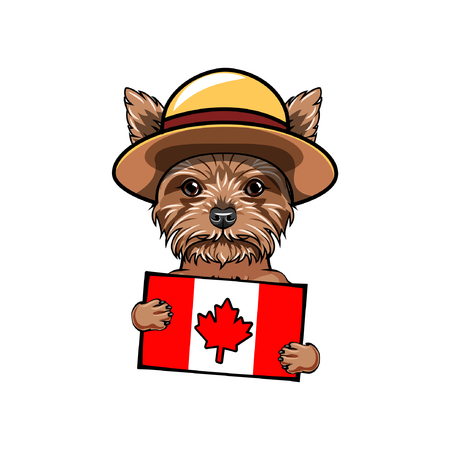 Yorkshire terrier dog. Canadian flag. Happy Canada day. Dog patriot. Royal Canadian Mounted Police. Dog portrait. Greeting card. Vector illustration.