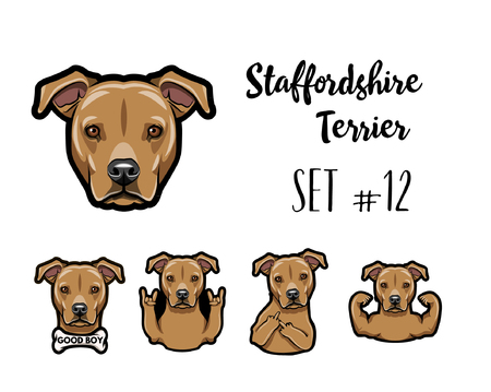 Staffordshire Terrier dog. Middle finger gesture, Horns, Muscles, Bone, Rock gesture. Staffordshire terrier head, face, muzzle. Dog portrait. Vector illustration. Stock Illustratie