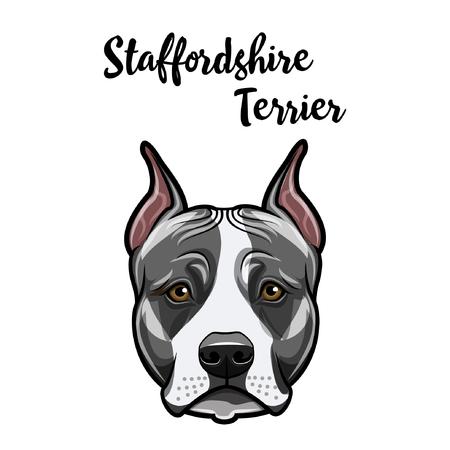 Staffordshire Terrier lo ha hecho. Retrato de perro. Cara de Staffordshire terrier, hocico. Raza canina. Ilustración de vector.