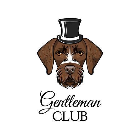 German Shorthaired Pointer gentlemat. Top hat. Dog portrait. Gentleman club inscription. Vector illustration.