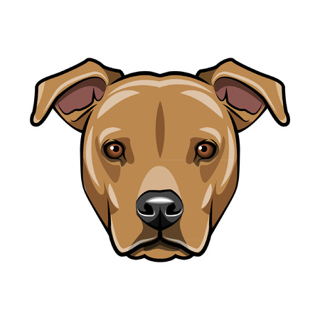 Staffordshire terrier portrait. Dog face, muzzle, head. Staffordshire terrier breed. Vector illustration. Çizim