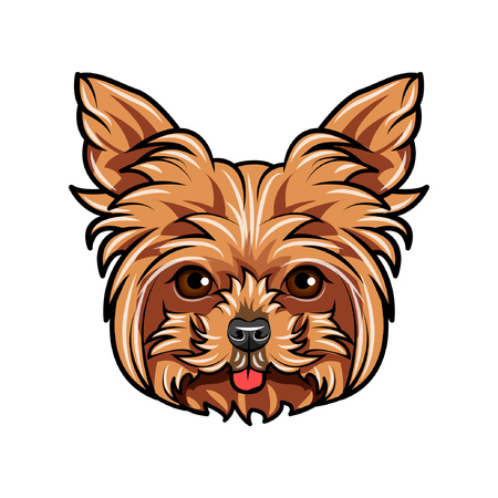 Domestic Yorkshire terrier Dog portrait. Cute head of Yorkshire Terrier on white background. Dog head, face, muzzle. Vector illustration. Illustration