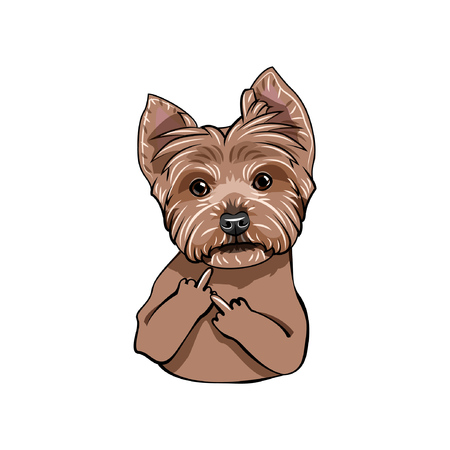 Yorkshire terrier dog portrait. Middle finger gesture. Dog portrait. Yorkshire terrier breed. Vector illustration.