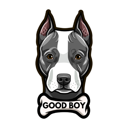 Staffordshire Terrier portrait. Bone. Good boy lettering. Staffordshire Terrier breed. Dog head, face, muzzle. Vector illustration. Illustration