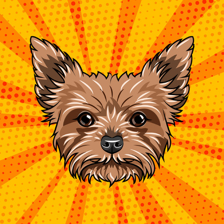 Yorkshire terrier dog portrait. Cute dog. Yorkshire Terrier breed. Vector illustration isolated on colorful background.