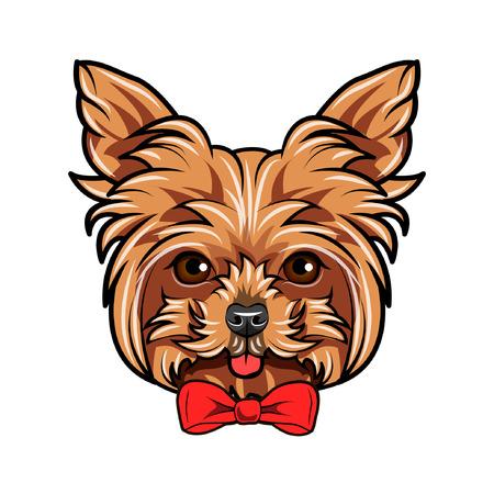 Yorkshire Terrier dog portrait. Bow accessory. Red decorative bow. Yorkshire terrier portrait. Vector illustration.