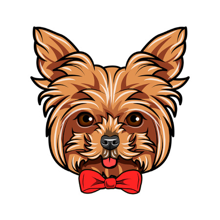 Yorkshire Terrier dog portrait. Bow accessory. Red decorative bow. Yorkshire terrier portrait. Vector illustration.