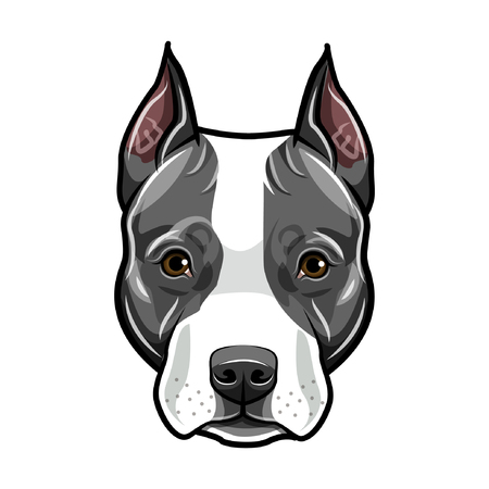 Staffordshire Terrier head. Dog portrait. Cute pet. Staffordshire terrier dog breed. Vector illustration.  イラスト・ベクター素材