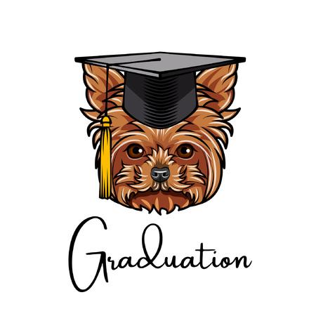 Yorkshire terrier graduate. Graduations cap hat. Dog portrait. Yorkshire terrier head. Graduation text. Vector illustration. Illustration