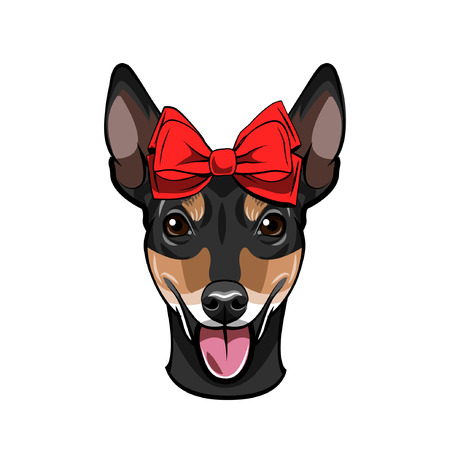 Russian Toy Terrier portrait. Bow icon. Decorative red bow. Toy terrier dog breed. Cute puppy. Vector illustration.