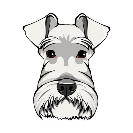 Schnauzer Dog Portrait. White schnauzer head. Dog face, muzzle. Cute pet. Vector illustration.