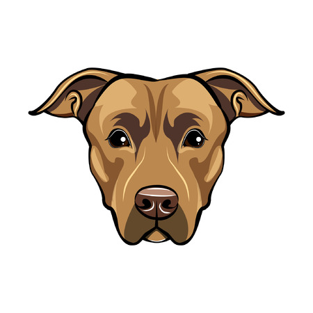American staffordshire terrier portrait. Cute dog. Staffordshire terrier breed. Vector illustration.