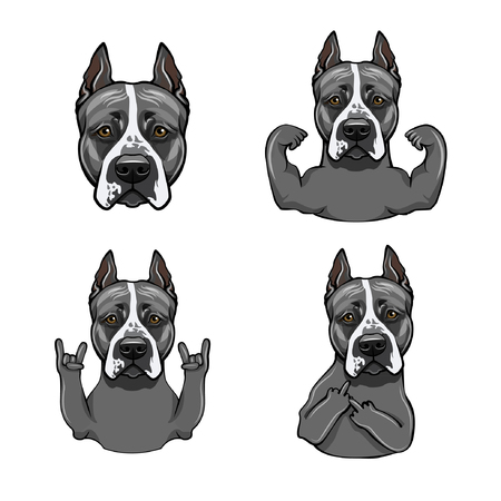 American Staffordshire Terrier. Rock gesture, Muscles, Head, Horns, Middle finger. Gesture set. Cute dog. Vector illustration.