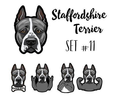 Staffordshire Terrier. Gestures set. Middle finger, Horns, Bone, Rock gesture. Dog portrait. Staffordshire Terrier head, face. Vector illustration.