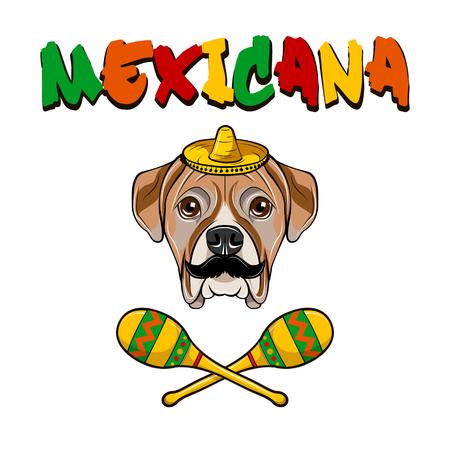 American Bulldog dog. Sombrero, Meracas, Mustache. Mexicana inscription. Mexico symbols. Vector illustration. Illustration