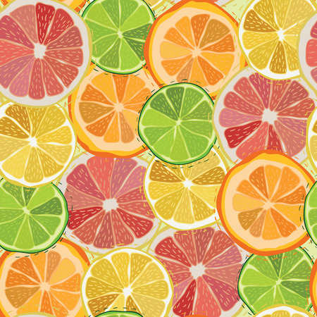 Citrus fruit seamless pattern Vector eps10 Vector
