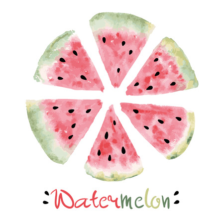 Watercolor slices of sweet watermelon with seeds Vector eps 10 Stock Illustratie