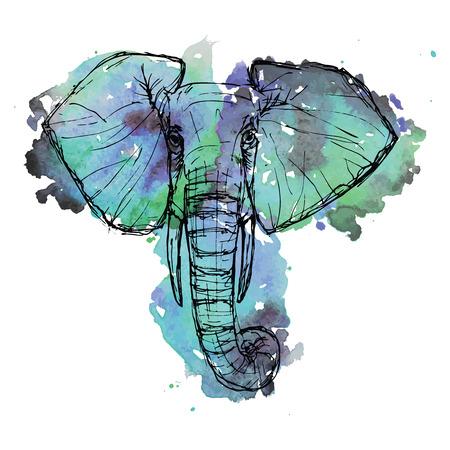 siluetas de elefantes: Safari de animales silvestres. Blanco y negro elefante lindo rostro pluma y tinta sobre un fondo de la acuarela para el folleto, la camiseta, el logotipo, invitaci�n, tarjeta, icono, tarjetas postales, ilustraci�n Plantilla de vector eps10 dibujado
