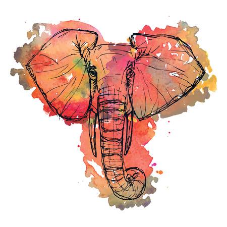 Safari de animales silvestres. Blanco y negro elefante lindo rostro pluma y tinta sobre un fondo de la acuarela para el folleto, la camiseta, el logotipo, invitación, tarjeta, icono, tarjetas postales, ilustración Plantilla de vector eps10 dibujado Foto de archivo - 45316564