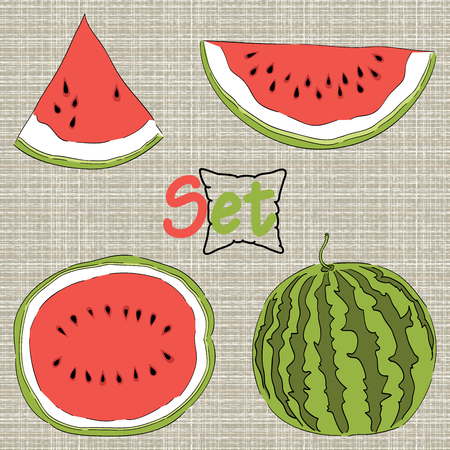 Set of watermelon Vector eps10