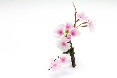 white blossom: Pink Cherry blossom, sakura flowers isolated on white background, fake Flowers made from fabric