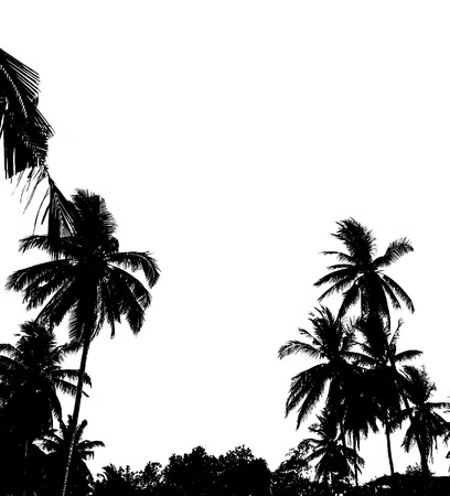 shadowgraph: Silhouette of palms isolated on white background Stock Photo