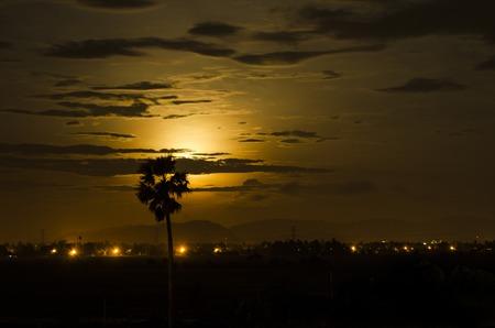 Golden Moon Foto de archivo