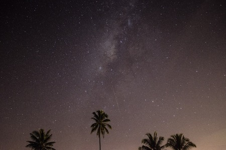 milkyway: Milkyway and meteor hit the sky at night with coconut silhouette Stock Photo