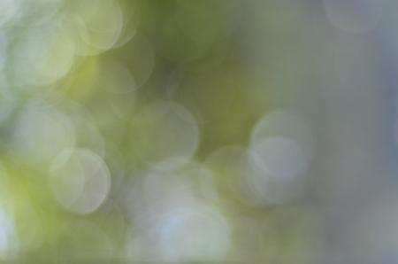 Antecedentes blur