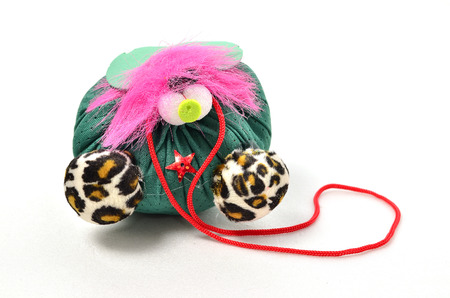 Kids Homemade Pet. Shoot over white background. Focus on the important part. Shallow depth of field.