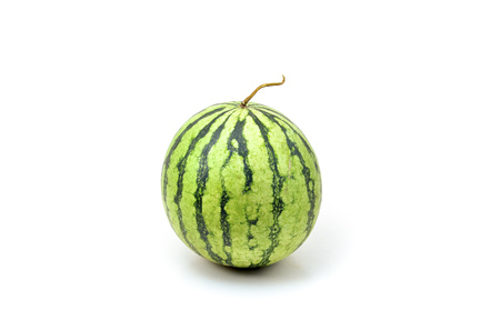 Watermelon shoot over white background