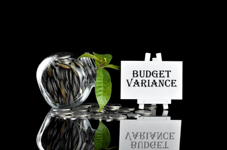 variance: Business Concept - Money in glass container with tree and white board written Budget Variance
