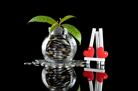 Concept - Plant in money container with small stand and love symbol over black background