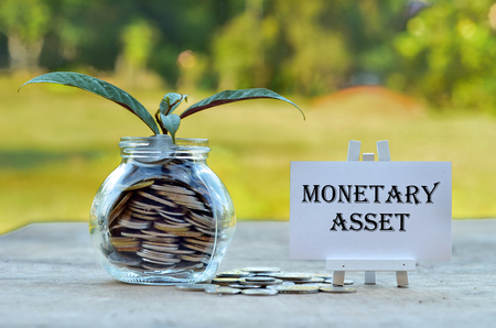 monetary concept: Business Concept - Money in glass container with tree and white board written Monetary Asset