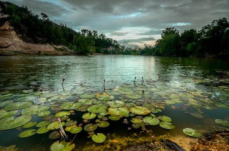 Vista hermosa puesta de sol con loto rojizo lleno en el lago
