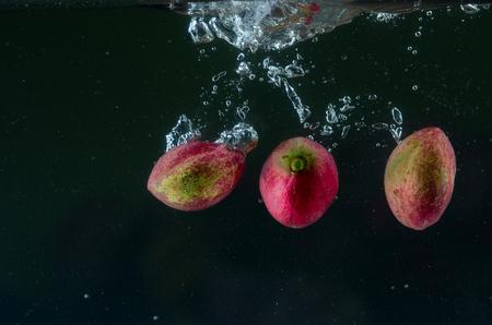 Nuova Guinea: Gods Crown fruit in splash Archivio Fotografico
