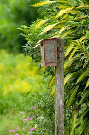 Letter box  pigeon hole of rural area. Surrounding by nature Stock Photo