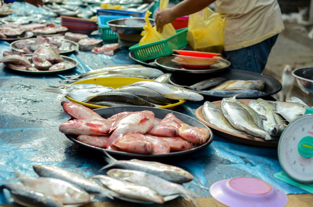 Fresh fish found in wet market of Malaysia