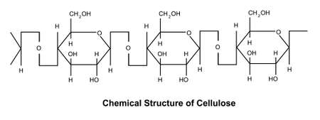 Cellulose is a polysaccharide composed of a linear chain of β-1,4 linked d-glucose units with a degree of polymerization ranged from several hundreds to over ten thousands. 矢量图像