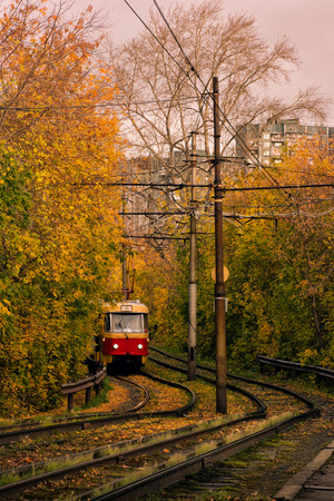 forest railroad: Tram on the background of autumn trees