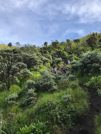 Mount Merbabu trail Stock Photo
